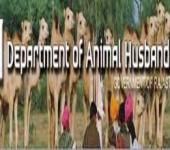 Department of Animal Husbandry, Rajasthan