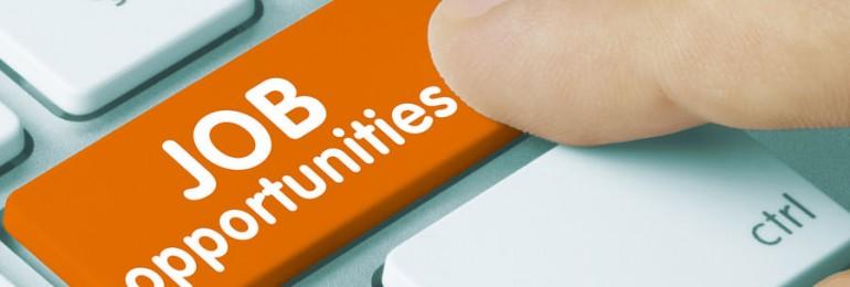 Employment Department, Rajasthan