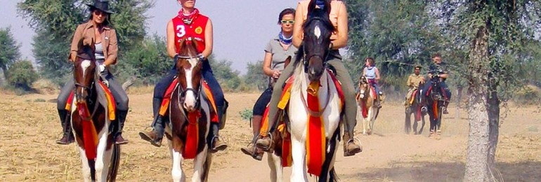 Horse Safari in Rajasthan