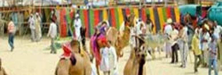 Mallinath Fair