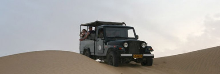 Jeep Safari in Rajasthan