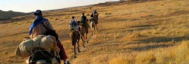 Trekking in Rajasthan