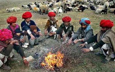 Rajasthan in February