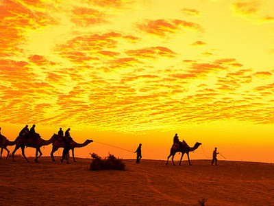 3 Nights Special Desert Festival Tour Package