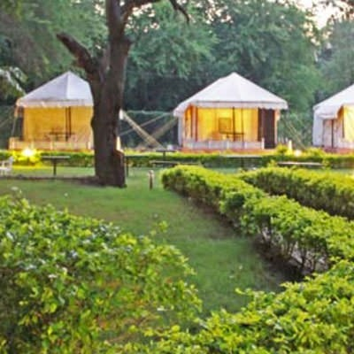 Aravali Tent Resort