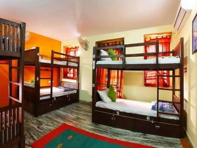 Bunk Hostel