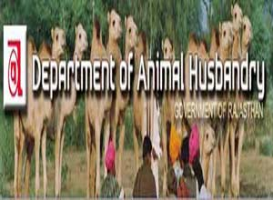 Department of Animal Husbandry, Rajasthan