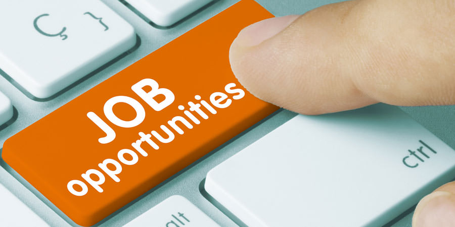 Employment-Department-Rajasthan