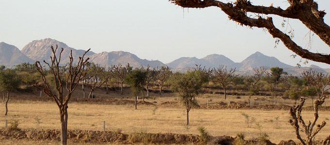 Ladnun, Rajasthan