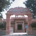 Bangur Museum Pali