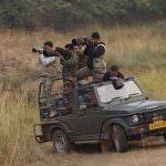 Safari at Ranthambore National-Park
