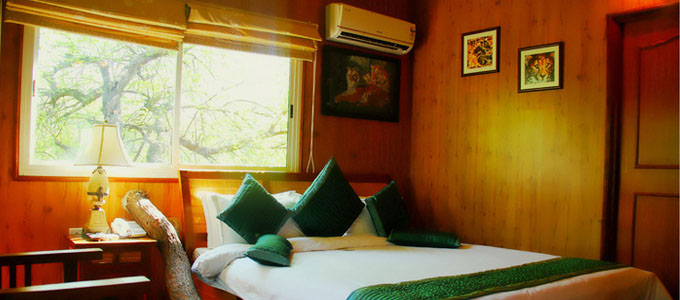 The Tree House Cottage in Jaipur