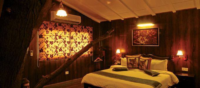 The Tree House Resort in Jaipur