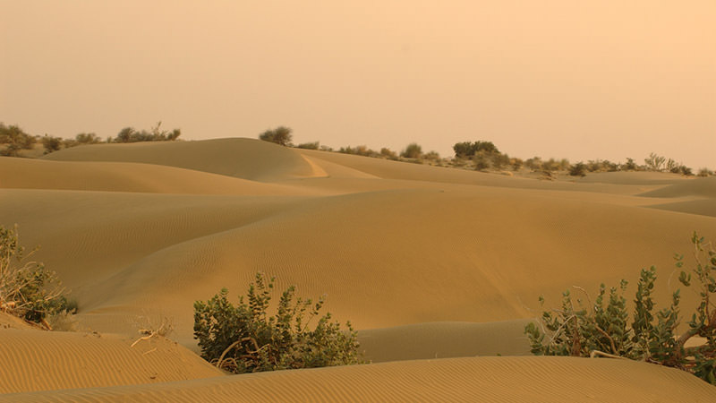 Thar Desert Rajasthan - Activities & Attractions of Thar ...