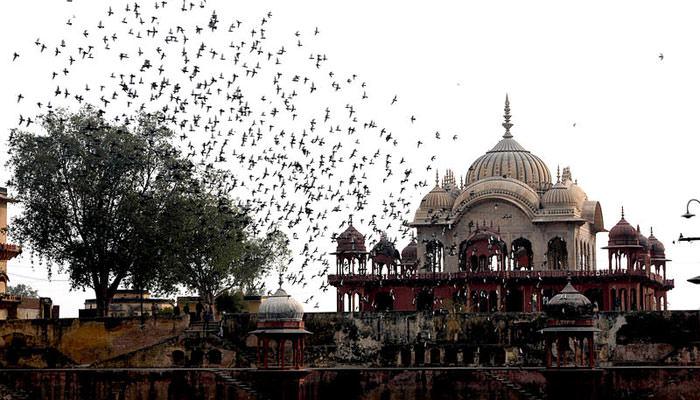 Moosi-Maharani-ki-Chhatri